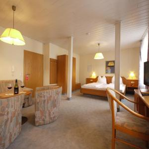 Hotel Pictures: Aparthotel Pinger, Remagen