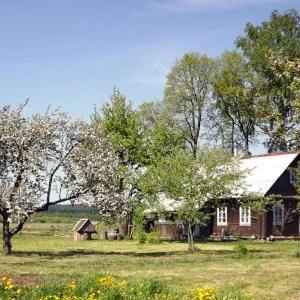 Hotellbilder: Guest House Zastenok Skriplevo, Zastenok Skriplevo