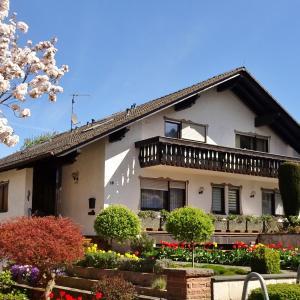 Hotel Pictures: Gästehaus Braun, Bad König