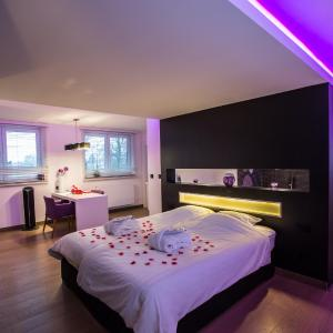 Hotel Pictures: Wellness Hasselt B&B, Hasselt