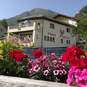 Hotel Pictures: Hotel-Restaurant Grina, Simplon Dorf
