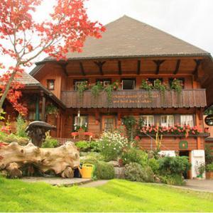 Hotel Pictures: Haus Erika, Wieden