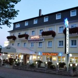Hotel Pictures: Hotel Bürgerhof, Homburg