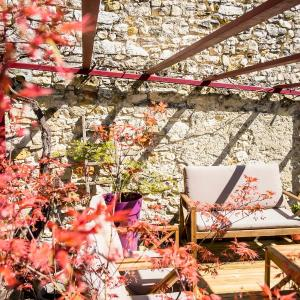 Hotel Pictures: La Treille Rouge, Limans