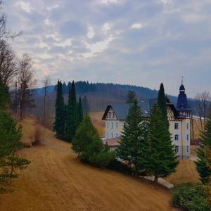 Hotel Pictures: Villa Grohmann, Lipova Lazne