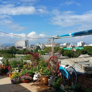 Hotel Pictures: Typha International Youth Hostel, Jianshui