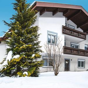 Foto Hotel: Ferienwohnung Gortipohl 190W, Sankt Gallenkirch