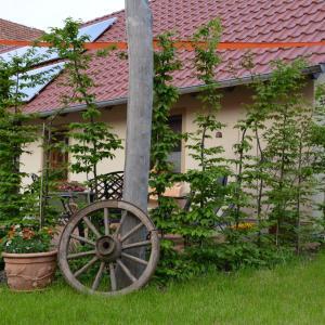 Hotelbilleder: Ferienhaus 'Landromantik', Bautzen