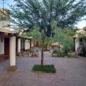 Fotografie hotelů: La Casa de los Vientos, San Carlos