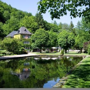 Hotel Pictures: Auberge Du Moulin Hideux, Bouillon
