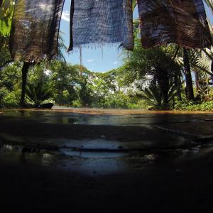 Hotel Pictures: Hosteria Mansion de la Amazonia, Macas