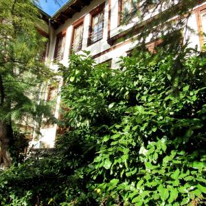 Hotel Pictures: Art Gallery, Smolyan