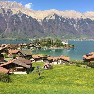 Hotel Pictures: Switzerland Iseltwald Apartment, Iseltwald