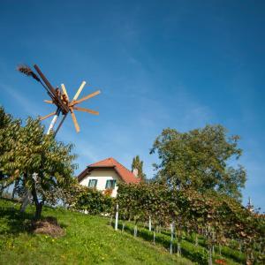 Hotelfoto's: Weinbau Dietrich, Gamlitz