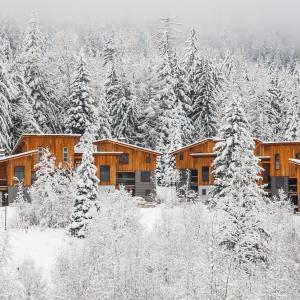 Hotel Pictures: The Mountain Project #2, Rossland
