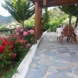 Hotel Pictures: Danai Village House, Palechori