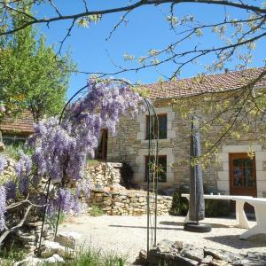 Hotel Pictures: La maison des Chevaux Noir, Montgesty
