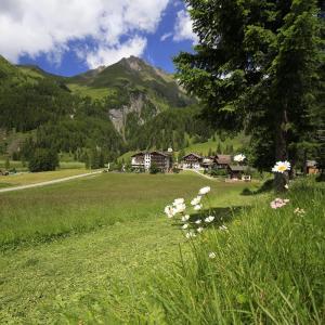 Hotel Pictures: Vital- und Wanderhotel Taurerwirt, Kals am Großglockner