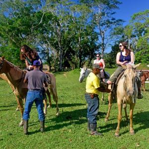 Φωτογραφίες: Banana Bank Lodge & Jungle Horseback Adventures, Belmopan