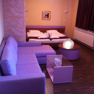 Hotelbilleder: Rusenski Lom Hotel, Koshov