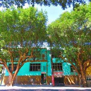 Hotel Pictures: Hotel Beija Flor, Manaus
