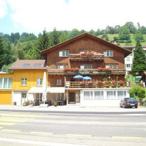 Hotel Pictures: Hotel Alpina, Unterwasser