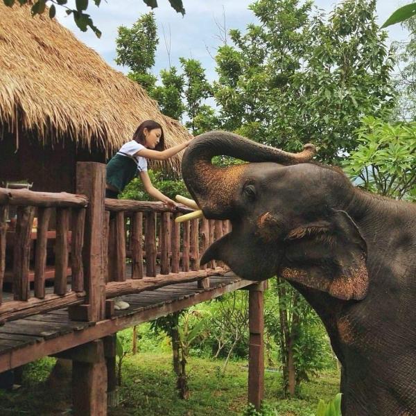 Chai Lai Mountain, Chiang Mai – View Deal – Guest reviews