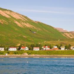 Ólafsfjörður 5 فنادق