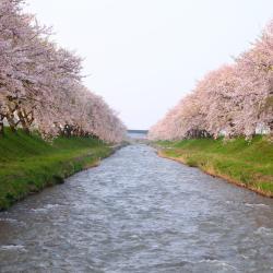 Toyama 37 hotéis