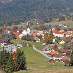 Ribnica na Pohorju 5 khách sạn