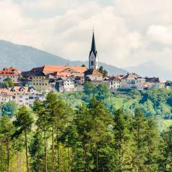 Radovljica 61 khách sạn