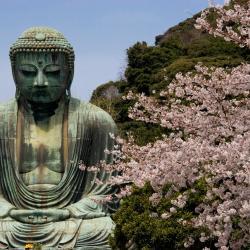 Kamakura 61 hoteles