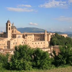 Urbino 91 hotéis