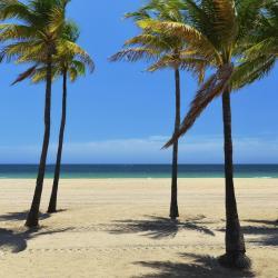 Palm Beach Shores 10 hotéis