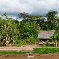 Iquitos 205 hotéis