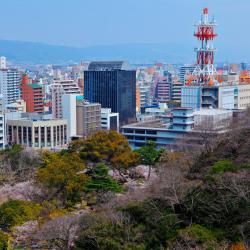 Wakayama 37 hotéis