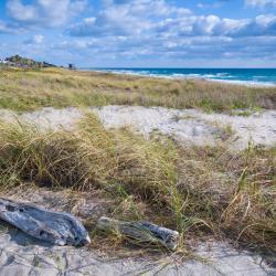 Delray Beach 64 hotéis