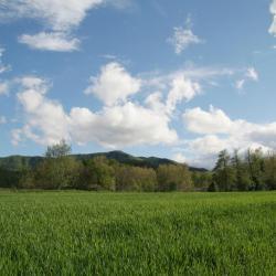 Casas de campo Pirineo de Girona. 91 propiedades rurales en ...