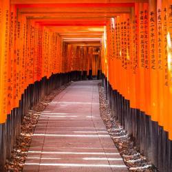 Quioto 870 casas de temporada