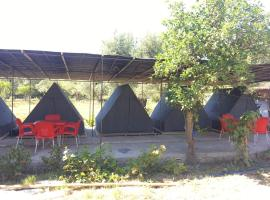 Borshi Tents