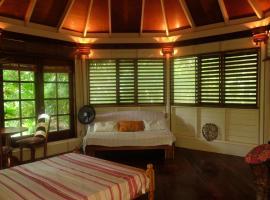 Jungle Cocoon