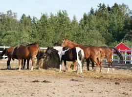Farm stay Ruteniya