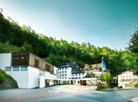 Hotel Zugbrücke Grenzau, Höhr-Grenzhausen
