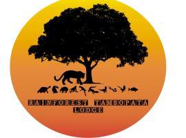 Rainforest Tambopata Lodge