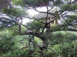 Natametree Lodge