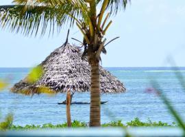 Bwejuu Beach Palm Villa