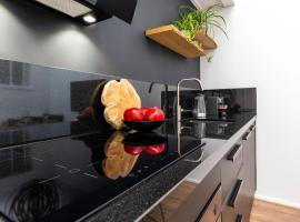 Delft City Center Luxurious Avant Garde Loft Apartment
