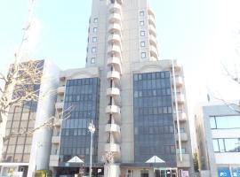 Hotel Alpha Inn Akita