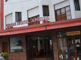 Gran Hotel Amelia