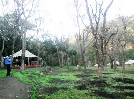 Camp Leopard Heights